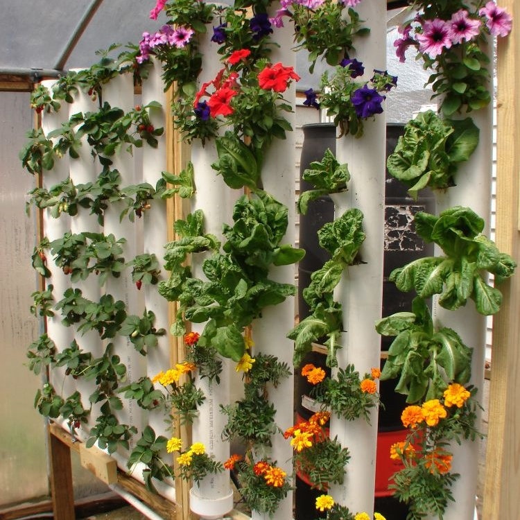 Start Your Own Vertical Garden! Plans And DVD